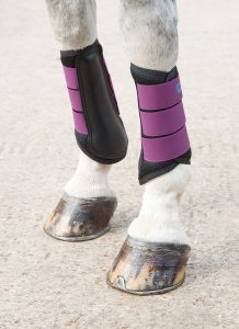 ARMA Air Motion Brushing Boots - Pony Club Camp