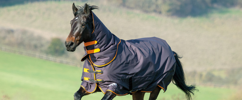 Shires Guide To Turnout Rugs Equestrian Blog