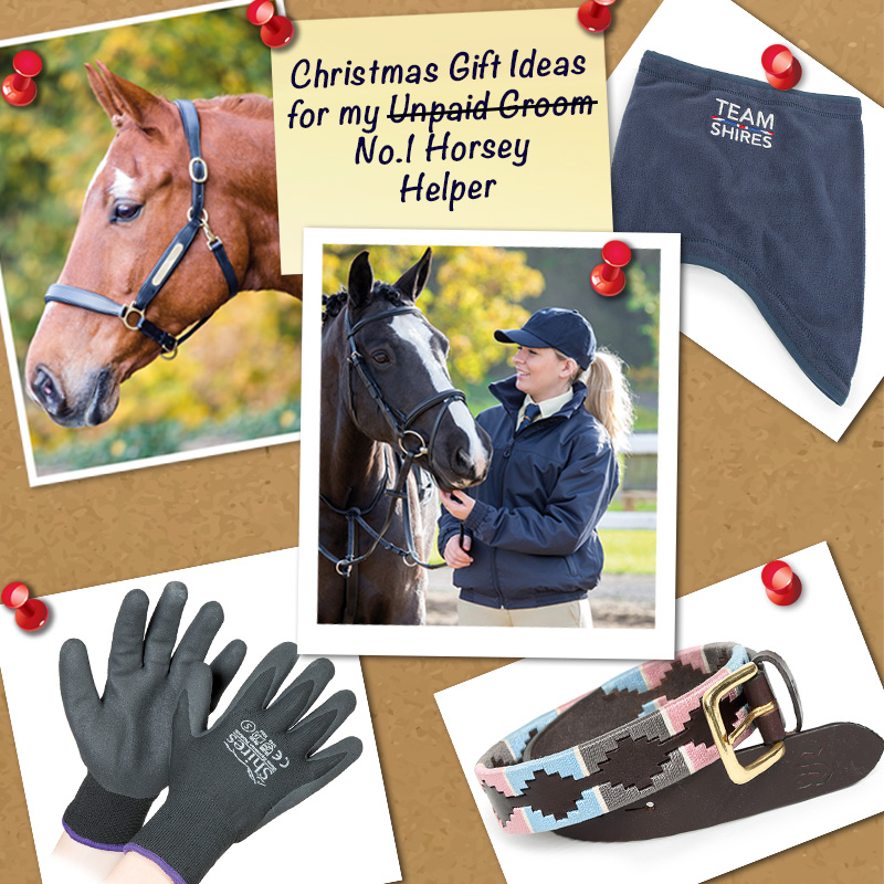 horsey helper groom riding instructor yard owner shires christmas gift guide