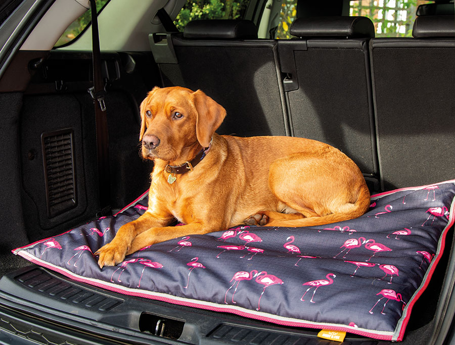 Digby & Fox Waterproof Dog Bed - Flamingo Print
