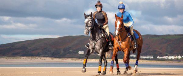 shires equestrian eventing essentials